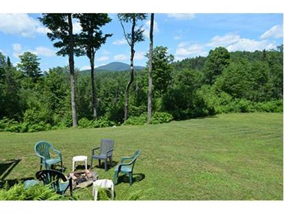923 Summit Road  Mount Holly, VT MLS# 4255819