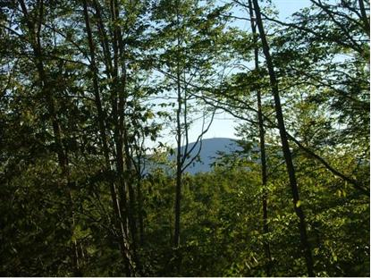 Lot #1 Chase Hill Rd Andover, NH MLS# 4259463