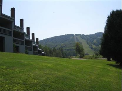 23 Mountain Brook #5  Burke Mountain, VT MLS# 4305434