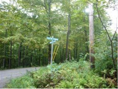 26 Canaan Ledge Lane Lyme, NH MLS# 4312485
