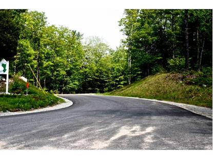 Lot 7 Ridgewood Lane Alton, NH MLS# 4319742