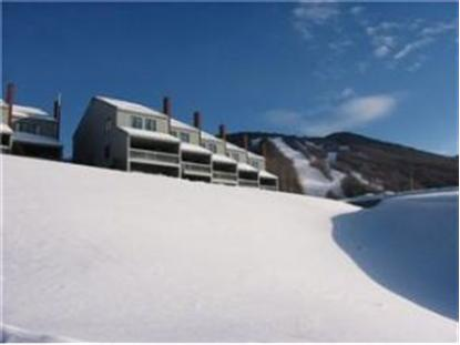 26 125 Mountain Brook Rd Burke Mountain, VT MLS# 4325046