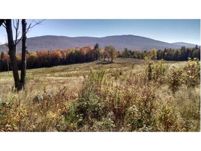 Summit Rd. Ext. Mount Holly, VT MLS# 4325484