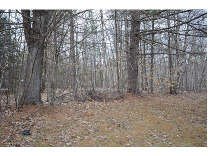 North Main / Mayhew Turnpike Bristol, NH MLS# 4341037