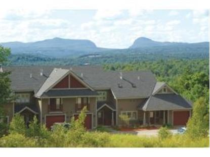 12 Bear Path Road Burke Mountain, VT MLS# 4341369