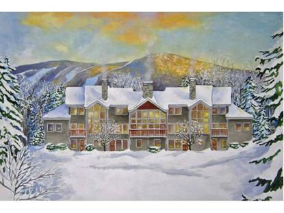 13 Bear Path Road Burke Mountain, VT MLS# 4341384