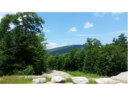 Sedlari Way Alton, NH MLS# 4342803