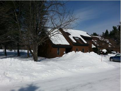 251 Luce Hill Road  Unit 34 Stowe, VT MLS# 4344432