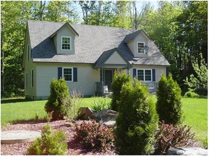 245 Teer Rd Mount Holly, VT MLS# 4351446