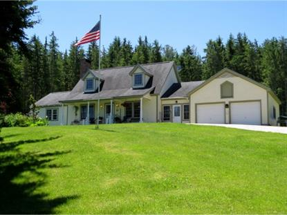 3350 VT Rte 155 Mount Holly, VT MLS# 4365395