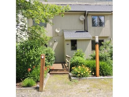 36C Crosstown Rd, West Dover, VT