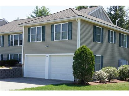 20 Buck Circle Danville, NH MLS# 4374134