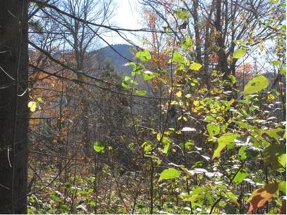 Lot #2 Winter's Way Burke Mountain, VT MLS# 4379900