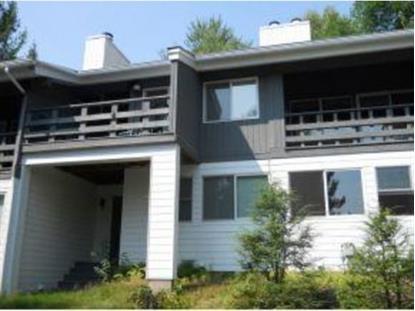 226 Mt. Mansfield Drive Stowe, VT MLS# 4388670
