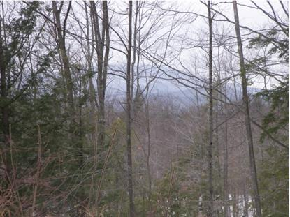 2-537 Chase Hill Rd  Andover, NH MLS# 4399728