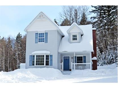 118 Rim Rock Road  Mount Holly, VT MLS# 4402179