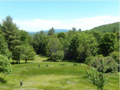38 Powell Road  Grafton, NH MLS# 4431485