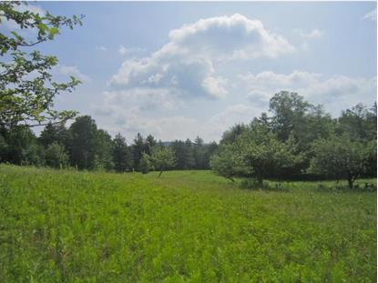 Cy Parker Rd Mount Holly, VT MLS# 4439179