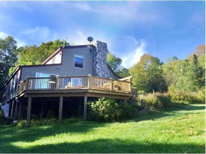 1691 Route 155  Mount Holly, VT MLS# 4457363