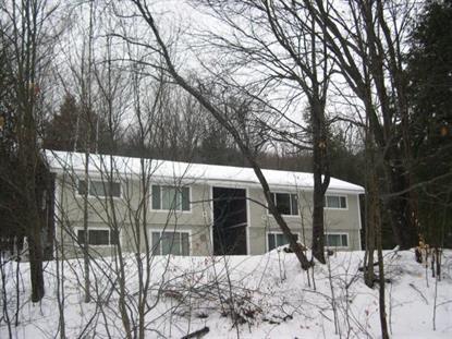 20 Ellis Ridge Unit #1 Rd Glen, NH MLS# 4460961