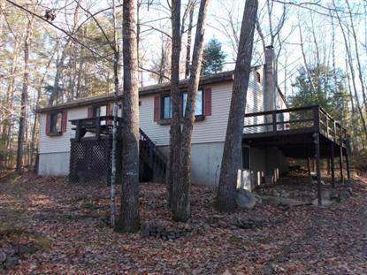 61 Marjorie Chick Lane  Madison, NH MLS# 4461775