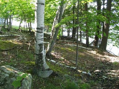 133C Rattlesnake Island  Alton, NH MLS# 4469155