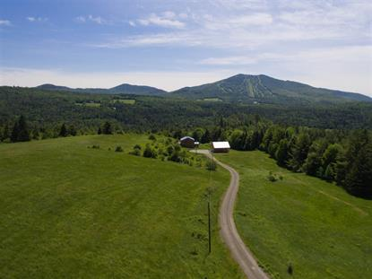 212 Marshall Newland Road Burke Mountain, VT MLS# 4477066