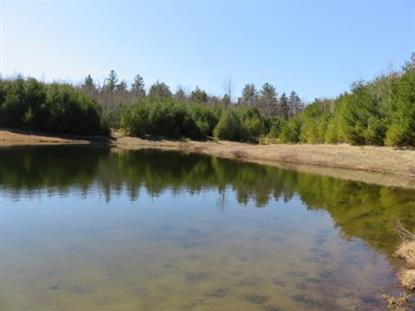 361 Height of the Land Road  Grafton, NH MLS# 4485652