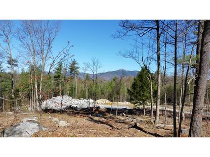 Hedgehog Hill Map 229 Lot 28  Madison, NH MLS# 4489027