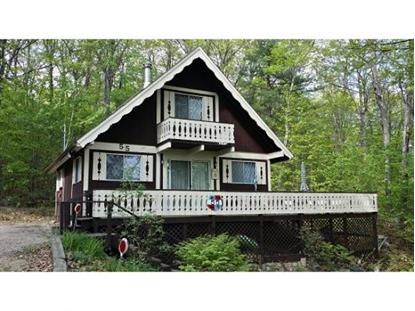 55 Oak Ridge Rd Madison, NH MLS# 4489198