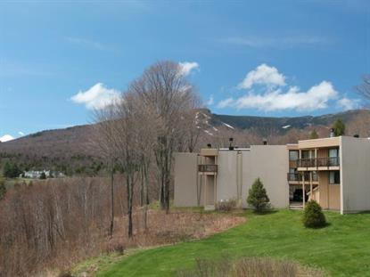 1227 Notchbrook Road  Stowe, VT MLS# 4491761