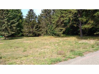 41 Tremont St Boscawen, NH MLS# 4505601