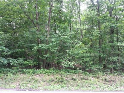 Wimmers Rd Jefferson TWP, PA MLS# 13-4284