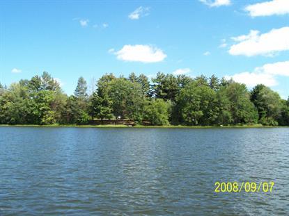 134 Bassett Lake Rd Fleetville, PA MLS# 14-2209