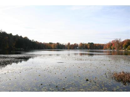 Hansome Lake  Fleetville, PA MLS# 15-5327
