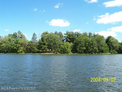 Bassett Lake Rd Fleetville, PA MLS# 15-6063