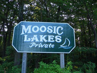 Little Lake RD Jefferson TWP, PA MLS# 16-1573