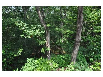0 HUNTINGHOUSE RD Glocester, RI MLS# 1113491