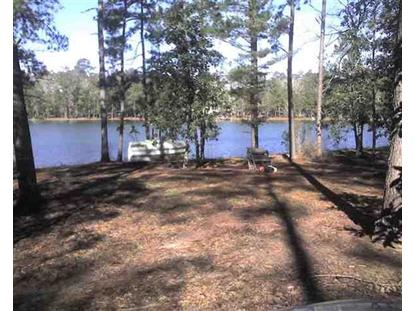 xxx Crystal Lake/Strickland Rd.  Attapulgus, GA MLS# 237741