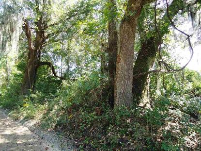 Vacant NW Bailey Grade Road  Greenville, FL MLS# 239235