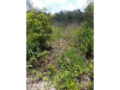ELLISON FRITH RD  Perry, FL MLS# 246985