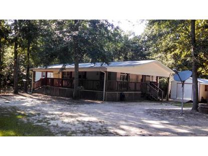 1151 E Buckhorn  Greenville, FL MLS# 248776