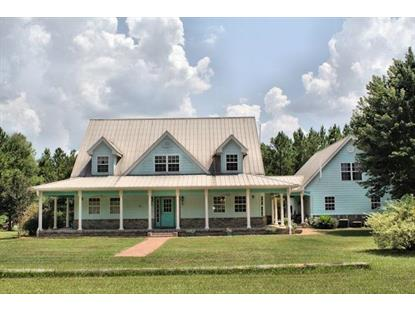 715 Mt Pleasant Cemetery Road  Chattahoochee, FL MLS# 249210