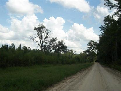 Vacant NW Elizabeth Sims  Loop  Greenville, FL MLS# 249637