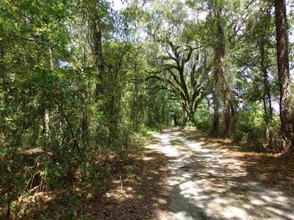 Vacant 128th Street  Live Oak, FL MLS# 249728
