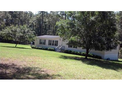 115 W 7th  Greenville, FL MLS# 250036