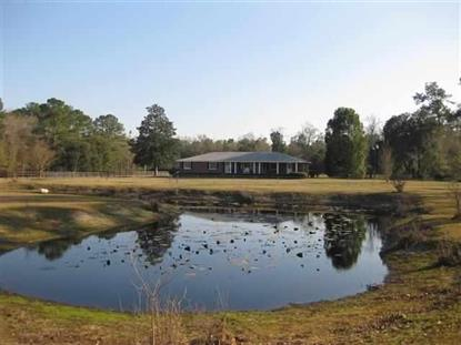 2302 Honey Lake Road  Greenville, FL MLS# 255212