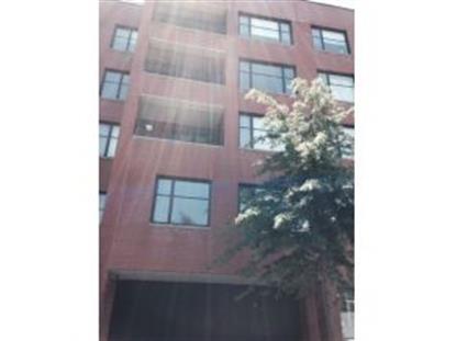 10 Slocum Pl Brooklyn, NY MLS# 386575