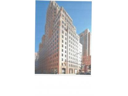 365 Bridge St Brooklyn, NY MLS# 392801