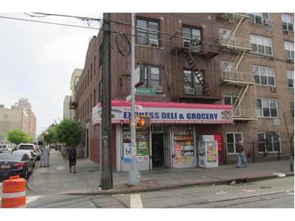 262 NEPTUNE AVE Brooklyn, NY MLS# 393361